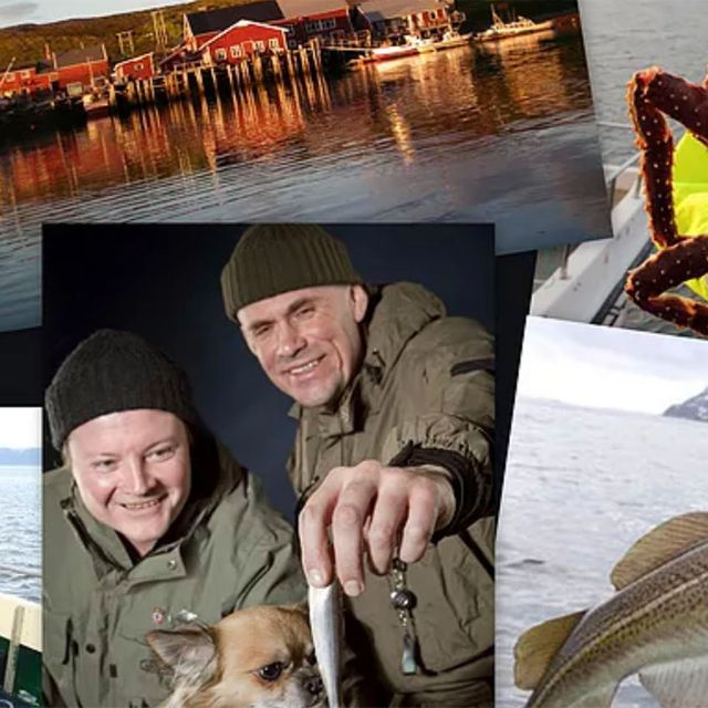 Picture collage of king crab fishing in north of Norway